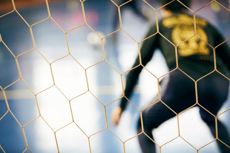≪中止≫【2020年4月:赤塚体育館】ZOTT WASEDA RAIZとのトレーニングマッチ開催のお知らせの画像
